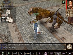 Neverwinter Nights Review by metzomagic com